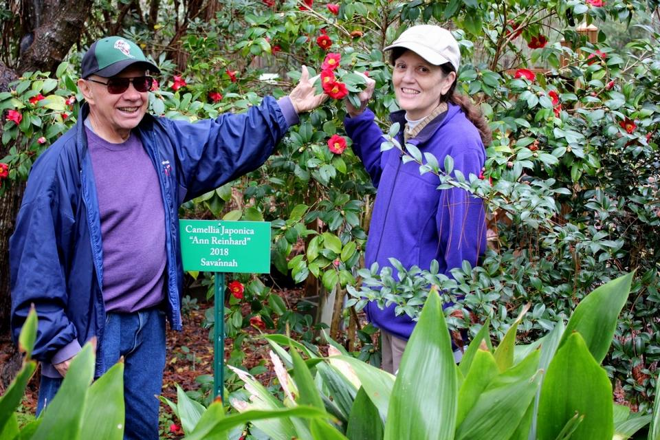 Looking for Pearls: Camellias a beautiful discovery at Savannah Botanical Gardens